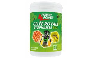PUNCH POWER GELEE ROYALE LYOPHILISEE BIO 60 GELULES