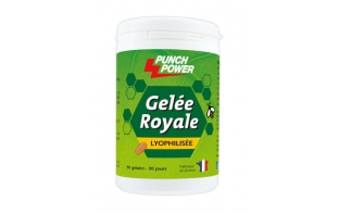 PUNCH POWER GELEE ROYALE (90 CPS)
